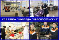 Наши специальности и профессии
